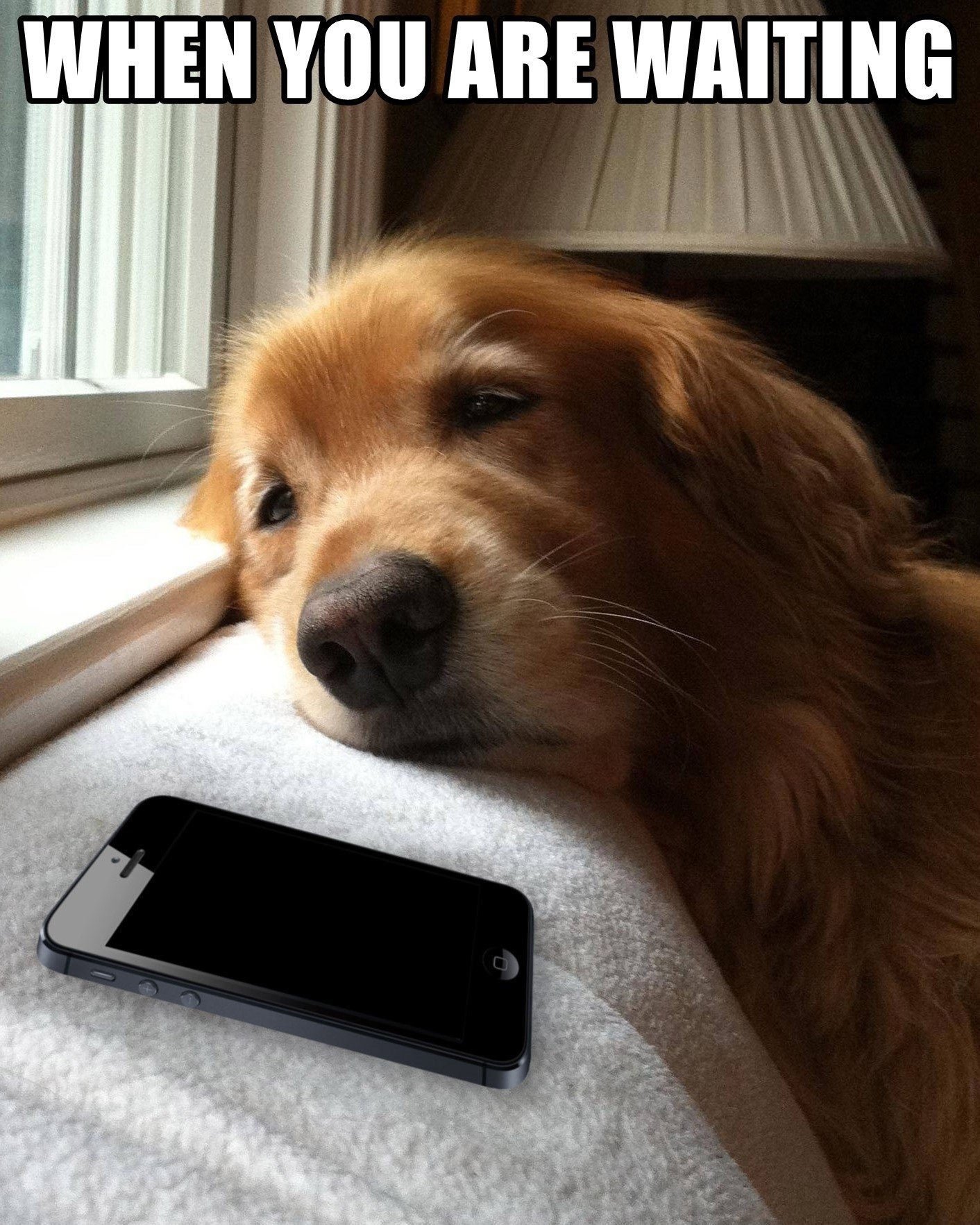 when-you-are-waiting-for-her-to-reply